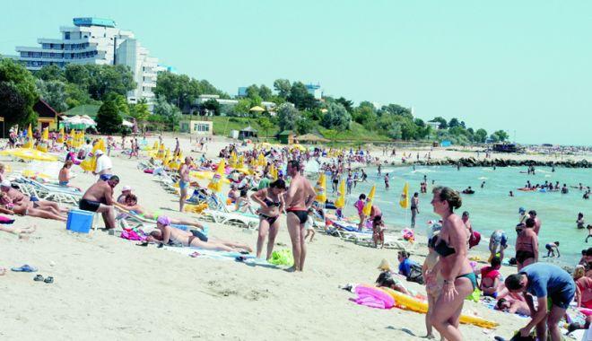 Foto: Sunteți în vacanță în sudul litoralului? Aluniţele la control!
