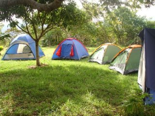 La Murfatlar vor fi amenajate zone de camping