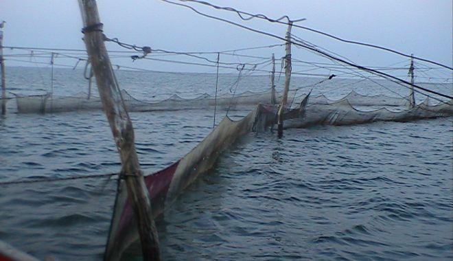 Foto: Captură de scule de pescuit ilegale, la Dunăre