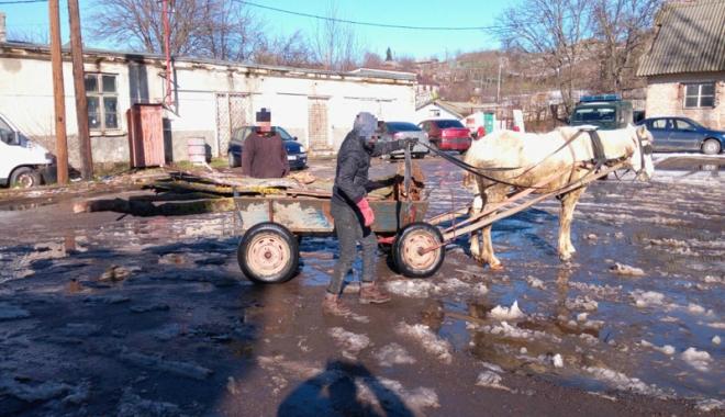 Căruţă cu lemne venită din Bulgaria, confiscată de poliţiştii de frontieră - caruta-1516642075.jpg