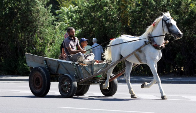 ADIO căruțelor de pe străzile Constanței! - carutecaitiganiintrafic4-1375372428.jpg