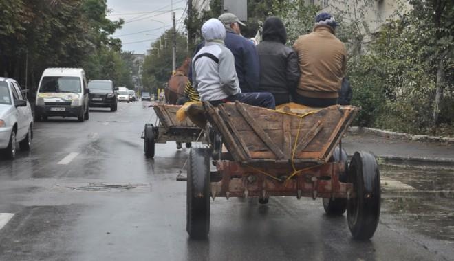 Foto: Căruţaşii fac legea, poliţiştii ridică din umeri
