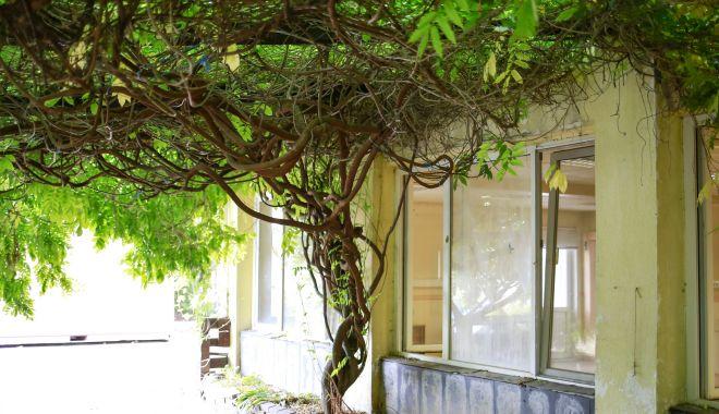 GALERIE FOTO / Casa Soarelui, preluată de Consiliul Judeţean. Va deveni Compartiment de Îngrijiri Paliative al Spitalului Judeţean - casasoarelui-1531233931.jpg