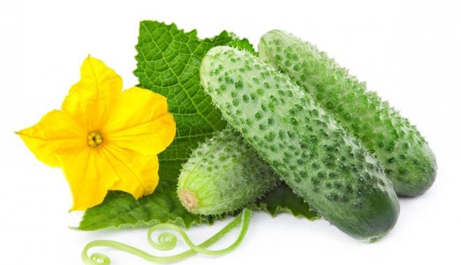 Foto: Castravetele nu este o legumă banală. Beneficiile sunt multiple