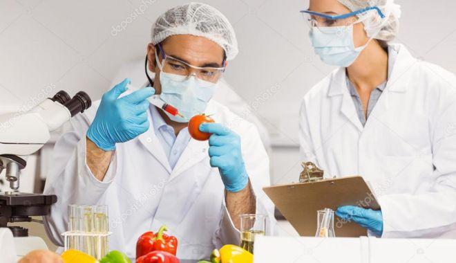 Foto: Cât de departe este România de modelul european  de siguranță alimentară?