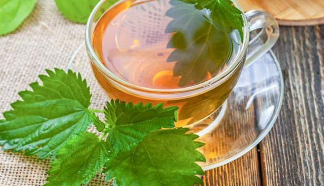 Foto: Ceaiul de urzică, o cură primăvăratică de sănătate