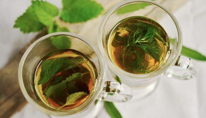Foto: Ceaiul din frunze de nuc, un miracol pentru păr şi ten