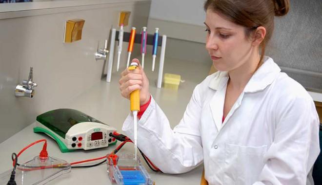 Număr imens de persoane vor să doneze voluntar, celule stem - celulestem-1375632455.jpg