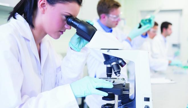 Foto: Guvernul vrea să investească în cercetarea ştiinţifică şi dezvoltarea tehnologică