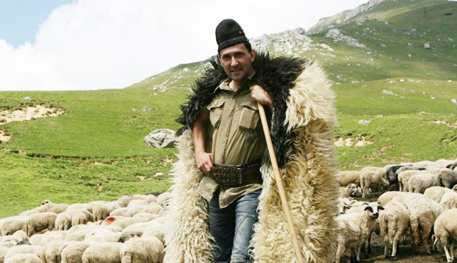 Ciobanul cu bâta lungă - ciobanul-1618579483.jpg