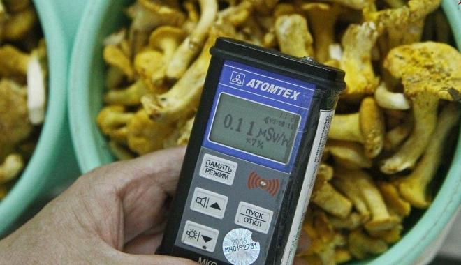 Foto: Urme de cesiu radioactiv în ciupercile importate din Rusia şi Belarus!