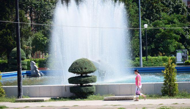 COD GALBEN de CANICULĂ şi VIJELII, la Constanţa - cod-1624606087.jpg