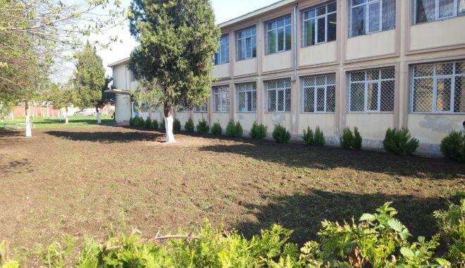 """Foto: """"Comoara verde de lângă noi"""". Spaţiu de predare în aer liber, la Şcoala nr. 22"""