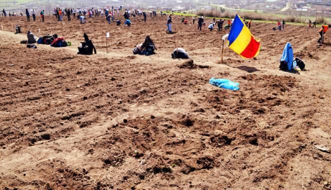 """Foto: Comuna Peştera, gazdă pentru acţiunea """"Plantăm Fapte Bune"""""""