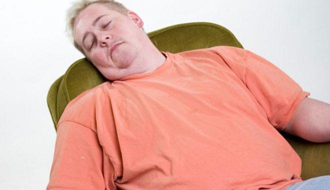 Foto: Confesiunile unui bărbat leneş care vrea un loc de muncă