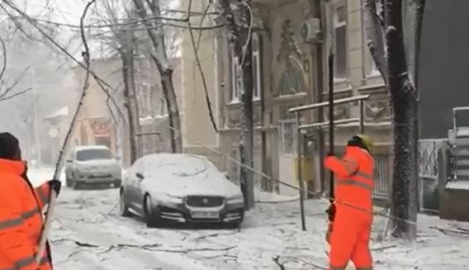 COD ROŞU DE VISCOL LA CONSTANŢA! Zeci de copaci căzuţi, în tot oraşul. Echipele intervin cu greu
