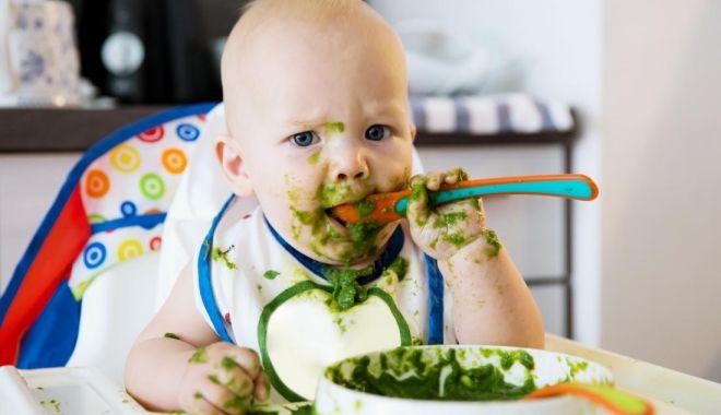 Foto: Pediatrie. Copilul mănâncă doar de foame, nu de poftă!