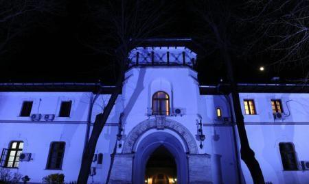 Foto: Palatul Cotroceni va fi iluminat în mov, de Ziua Internaţională a Luptei împotriva Epilepsiei