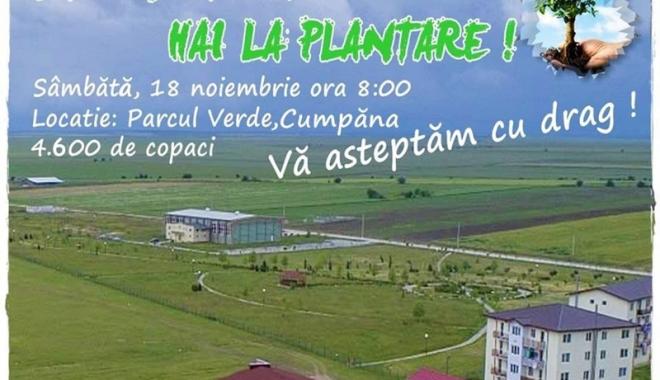 Acţiune de plantare, iniţiată de Primăria Cumpăna - cumpana-1510940917.jpg