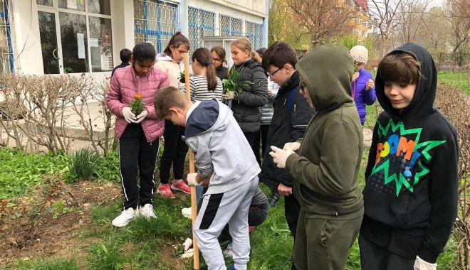 """Foto: Elevii constănțeni se implică în campania """"Curățăm Constanța noastră"""""""