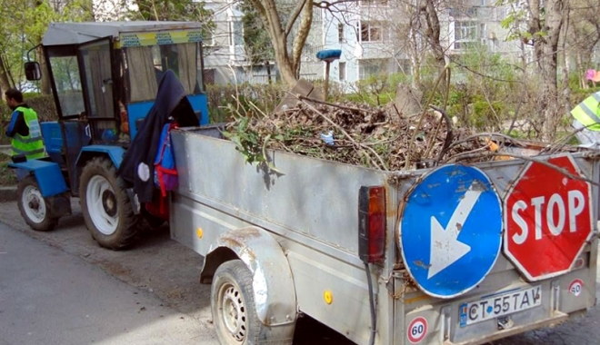 """Foto: """"Curăţăm Constanţa noastră"""". Încep plantările de gazon şi copaci"""