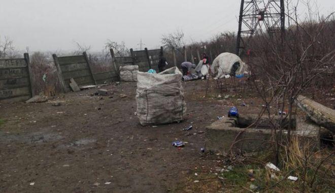 Foto: Falezele portului, curăţate cu ajutorul poliţiştilor locali