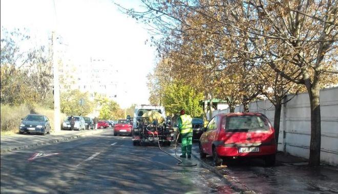 Curăţenie generală, la Constanţa. Ce cartiere sunt vizate, săptămâna aceasta - curateniegenerala-1606221396.jpg