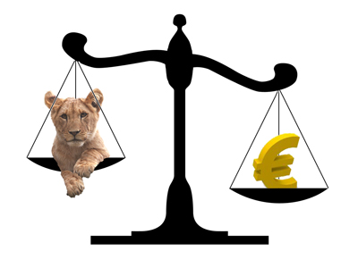 Foto: Leul a muşcat serios din euro