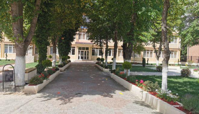 """Foto: Curtea Școlii Gimnaziale """"Lucian Grigorescu"""" din Medgidia, o adevărată grădină botanică"""