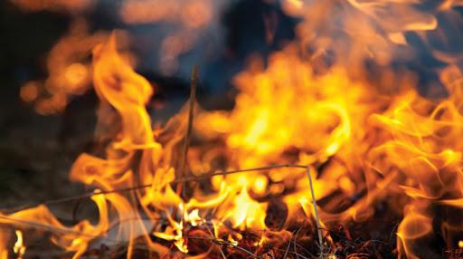 Alertă în toiul nopții! Pompierii au luptat 6 ORE cu flăcările, într-o zonă inaccesibilă - ddd-1582528263.jpg