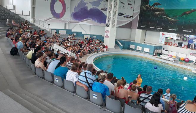 Foto: Bazine mai mari pentru delfini, Acvariu cu rechini și un Planetariu modern