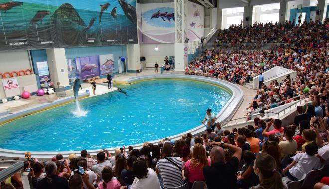Foto: Delfinariul Constanța va fi extins și vom avea un nou acvariu