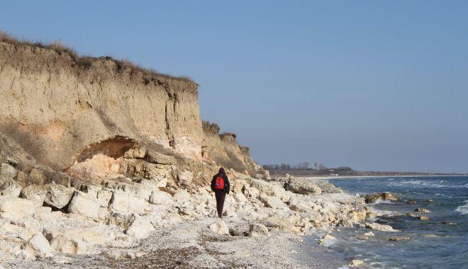 Foto: ONG Mare Nostrum desfăşoară noi proiecte de mediu