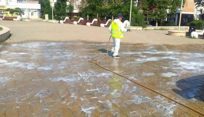 Foto: Dezinfecție și dezinsecție în toate cartierele și în centrul Constanței