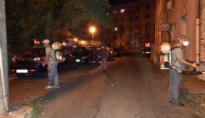 Foto: Primăria a început dezinsecția. Ce cartiere sunt vizate astăzi
