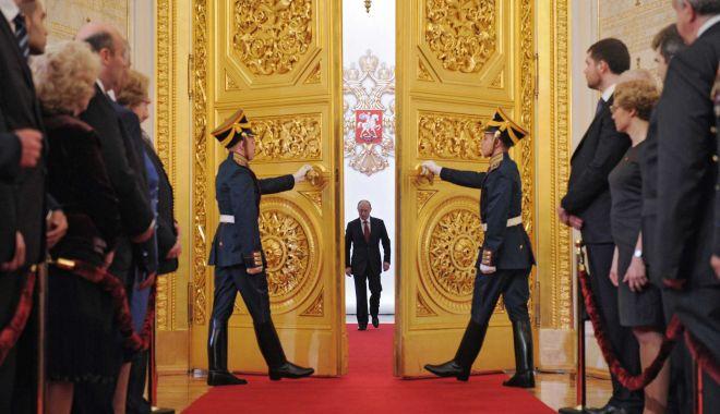 Foto: Ursul la miere. Moscova: blitzkrieg cu democrația