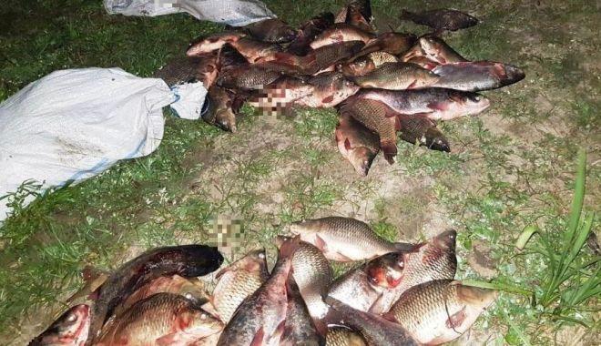 Foto: Dosare penale după ce au fost prinși cu peştele furat de la o fermă