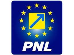 Foto: Primarii Marius Ştefan şi Viorel Petre, reconfirmaţi preşedinţi ai PNL