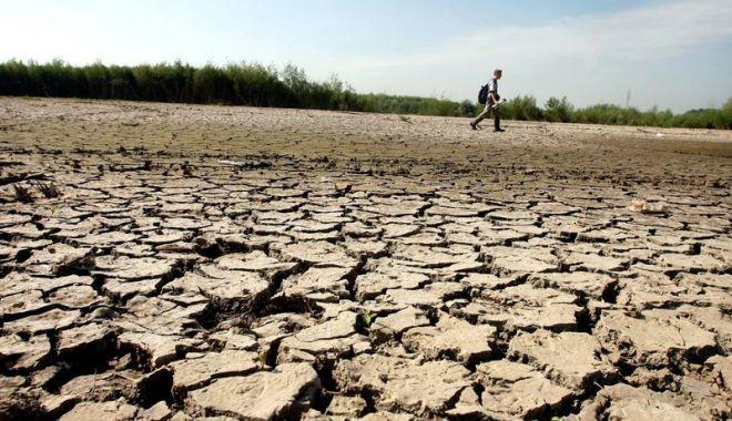 Cehia se confruntă cu cea mai gravă secetă din ultimii 500 de ani - draught-1588175450.jpg