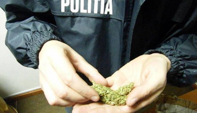 Foto: Captură impresionantă. Aproape 3 tone de droguri și 6.000 de comprimate, ridicate de mascaţi