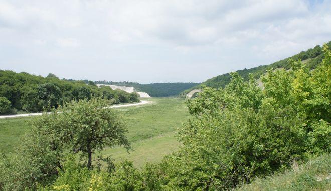 Fără picnic în pădurea de la Dumbrăveni de 1 Mai si Paşte! - dumbraveni-1619797157.jpg