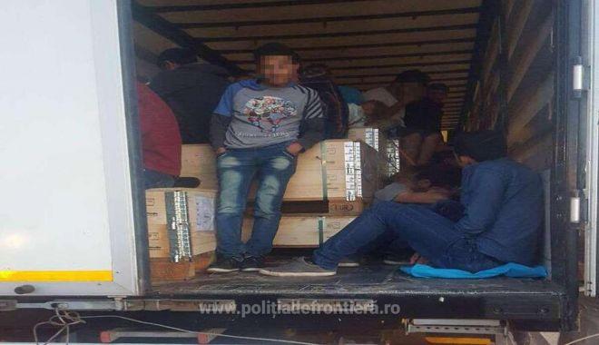 Foto: 79 de migranţi ilegali descoperiţi la frontiera Ungariei cu România