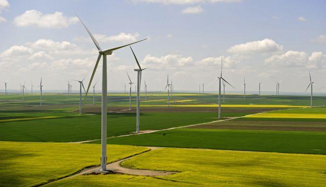 Foto: Olandezii construiesc în România al cincilea parc eolian din lume