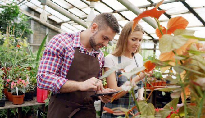 Foto: Joburi în străinătate. Se caută meseriași și muncitori în grădinărit