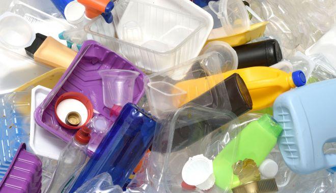 Foto: Europa scoate în afara legii paharele, farfuriile și tacâmurile din plastic, de unică folosință