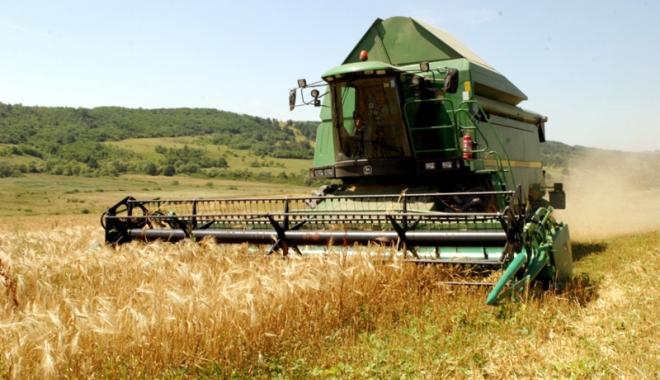 Foto: Evoluţii spectaculoase în agricultura românească, după aderarea la UE