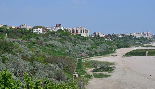 Editorial - Faleza plajei Modern, între nostalgie și betoane - falezaplajamodern2-1617301726.jpg