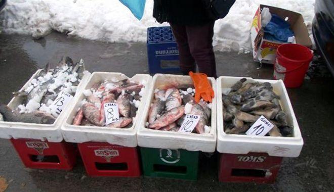 Foto: Femeie prinsă cu zeci de kilograme de peşte fără acte