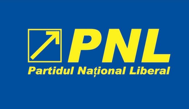 Foto: Mihai Eminescu, omagiat de femeile din PNL Constanța