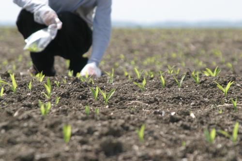 Foto: Iată de la ce bănci pot lua credite fermierii constănţeni